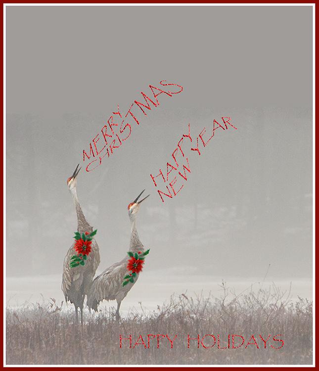 christmas2014CranesFlat3